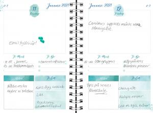 Life planner Diary Blue 2021