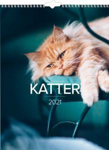 Stora Kattkalendern 2021