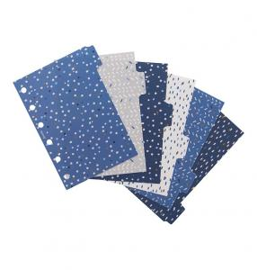 Filofax Pocket Indigo Dividers