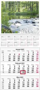 Trebello 2021