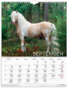 Stora Hästkalendern 2022