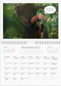 Väggkalender djurkul 2022