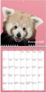Väggkalender Sötnosar 2022