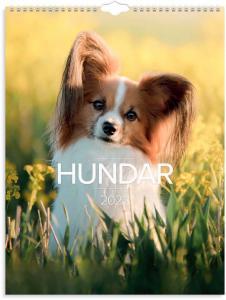 Stora Hundkalendern 2022