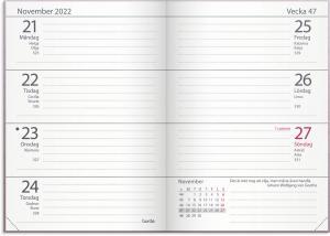 Lilla Fickdagboken ariane rosa 2022