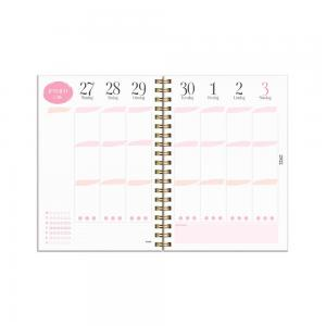 Life Planner Pink A6 2021-2022