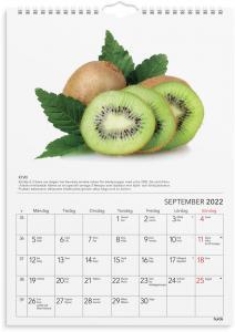 Väggkalender gröna tips 2022
