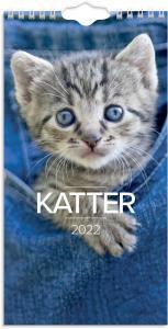 Liten kattkalender 2022