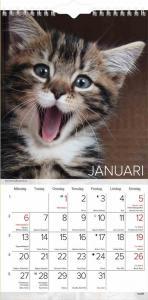 Liten kattkalender 2021
